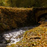 Río Cabrillas (entrada de Checa)